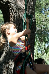 Recreational Tree Climbing Accessibility