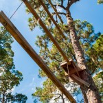 High Ropes Elements - Duo Dangle