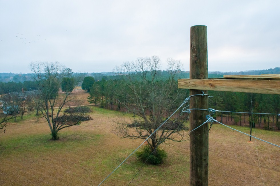 Ropes Course Repair view from the top