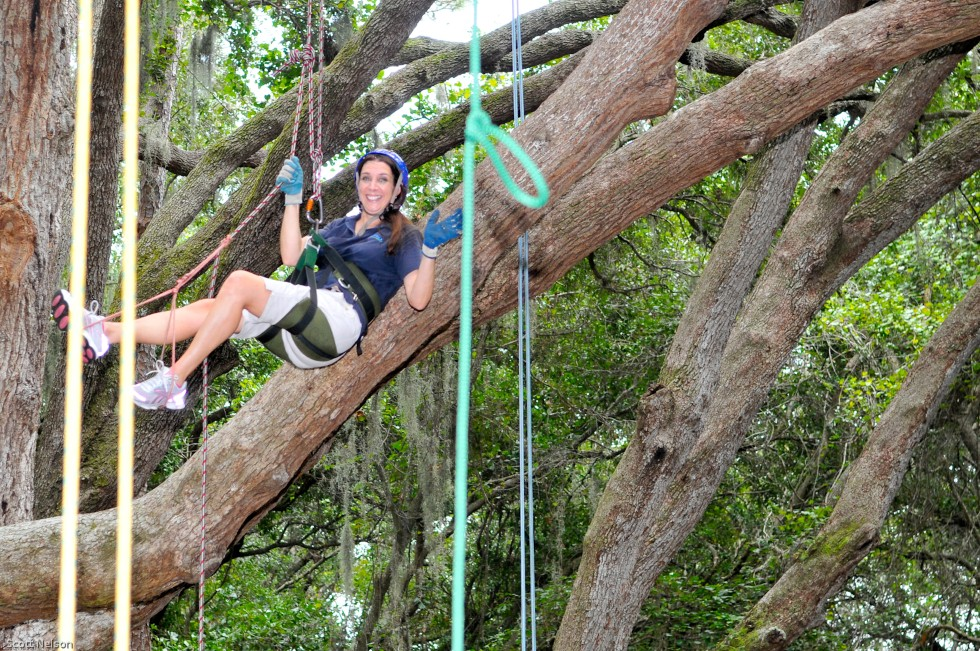 Recreational Tree Climbing Event